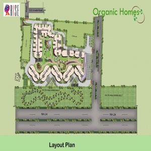 organic homes site plan